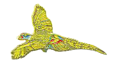 Lapel Pin - Flying Pheasants