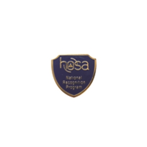 National Recognition Pin