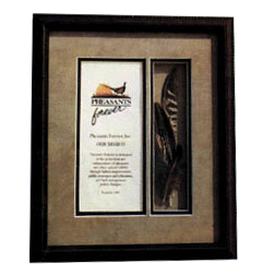 Framed Feathers with Mission Statement